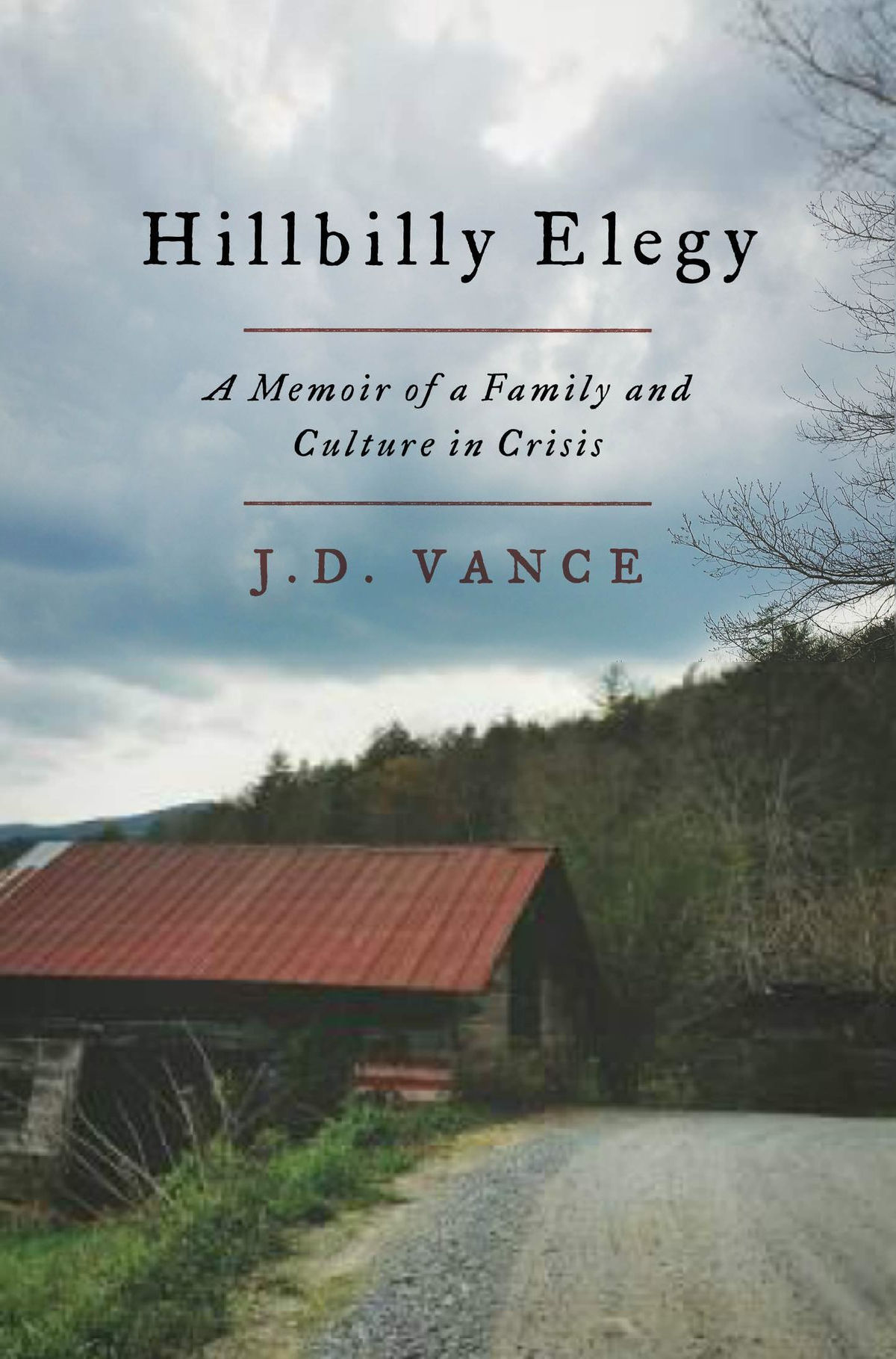 Hillbilly Elegy by JD Vance - a memoir by a man raised in Ohio by hillbillies from Kentucky. The link goes to BookLady's review of this book. http://lindajomartin.com/hillbilly-elegy-bookladys-review/